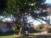 img00167-20110123-1541